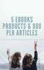 Thumbnail 5 Ebooks Products & 900 PLR Articles